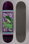 Plateau de skateboard Birdhouse-Raybourn Psych Frog Pro Purple-2016