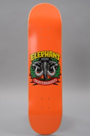 Plateau de skateboard Elephant skateboard-Logo Street 8.0x32-2017