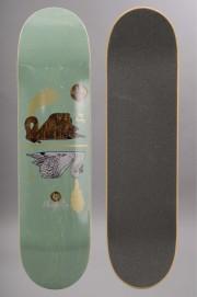 Plateau de skateboard Magenta-Soy & Vivien-INTP