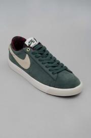 Chaussures de skate Nike sb-Blazer Low Gt-SPRING16