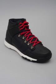 Chaussures de skate Nike sb-Dunk High-HO16/17