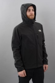 Veste homme The north face-Apex Bionic-FW17/18