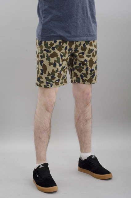 Short homme Dickies-Phillipsville-SPRING16