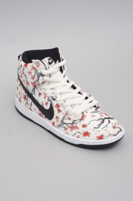 Nike sb-Dunk High Pro-SPRING16